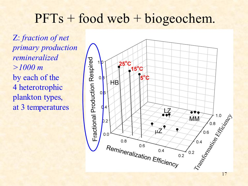 17 PFTs + food web + biogeochem. Z: fraction of net primary production remineralized >1000 m by each of the 4 heterotrophic plankton types, at 3 tempe