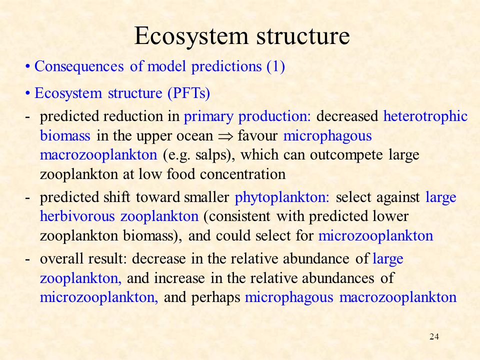 24 Consequences of model predictions (1) Ecosystem structure Ecosystem structure (PFTs) -predicted reduction in primary production: decreased heterotrophic biomass in the upper ocean favour microphagous macrozooplankton (e.g.