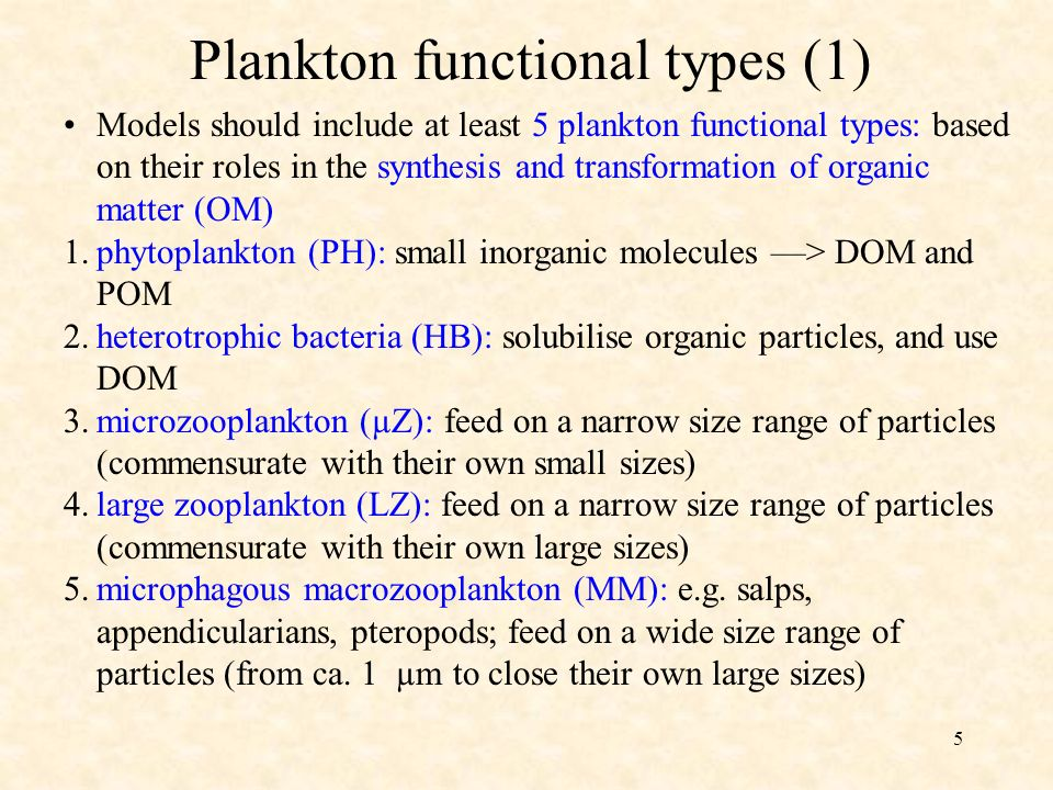 5 Models should include at least 5 plankton functional types: based on their roles in the synthesis and transformation of organic matter (OM) Plankton functional types (1) 1.phytoplankton (PH): small inorganic molecules > DOM and POM 2.heterotrophic bacteria (HB): solubilise organic particles, and use DOM 3.microzooplankton (µZ): feed on a narrow size range of particles (commensurate with their own small sizes) 4.large zooplankton (LZ): feed on a narrow size range of particles (commensurate with their own large sizes) 5.microphagous macrozooplankton (MM): e.g.