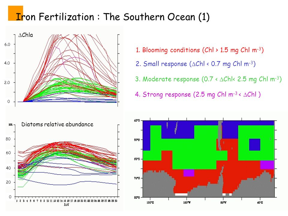 Iron Fertilization : The Southern Ocean (1) 2. Small response ( Chl < 0.7 mg Chl m -3 ) 3.