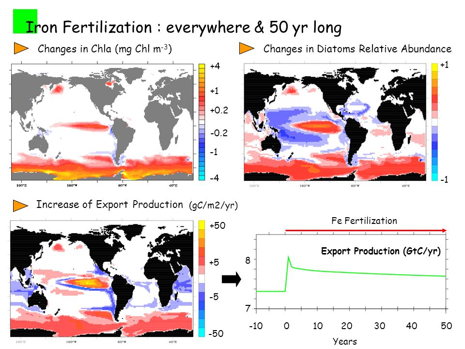 Iron Fertilization : everywhere & 50 yr long Changes in Diatoms Relative Abundance +1 Export Production (GtC/yr) Years Fe Fertilization Increase of Export Production (gC/m2/yr) Changes in Chla (mg Chl m -3 )