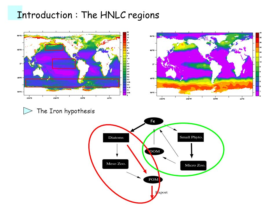 Introduction : The HNLC regions The Iron hypothesis Fe