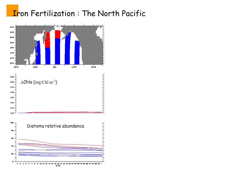 Iron Fertilization : The North Pacific Diatoms relative abundance Chla ( mg Chl m -3 )