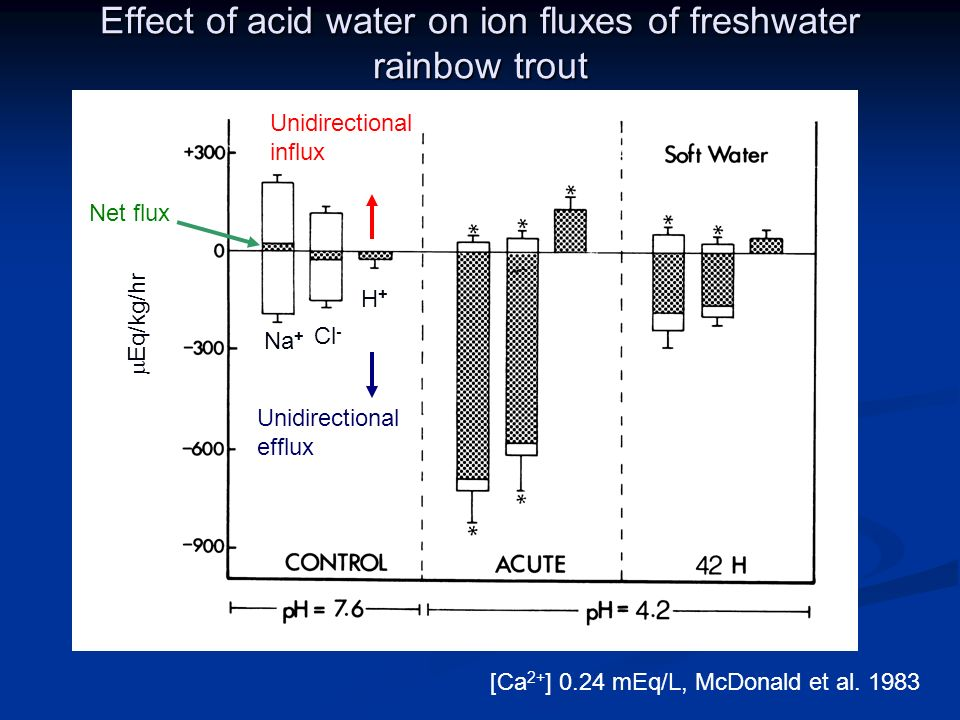 Effect of acid water on ion fluxes of freshwater rainbow trout [Ca 2+ ] 0.24 mEq/L, McDonald et al.