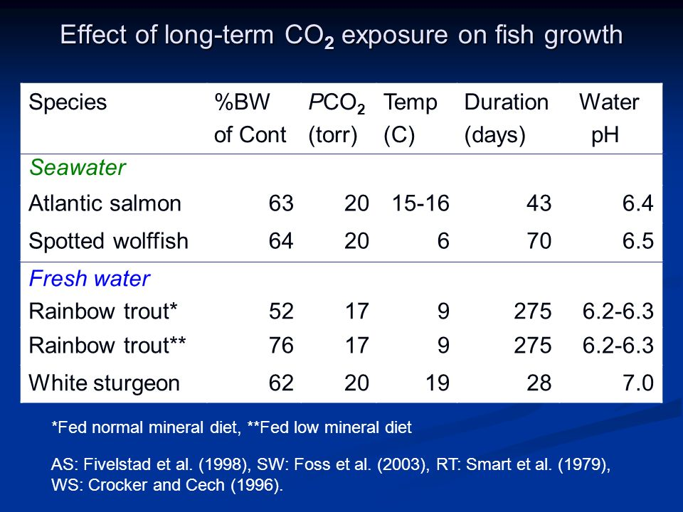 Effect of long-term CO 2 exposure on fish growth Species Seawater %BW of Cont PCO 2 (torr) Temp (C) Duration (days) Water pH Atlantic salmon632015-16436.4 Spotted wolffish64206706.5 Fresh water Rainbow trout*521792756.2-6.3 Rainbow trout**761792756.2-6.3 White sturgeon622019287.0 AS: Fivelstad et al.