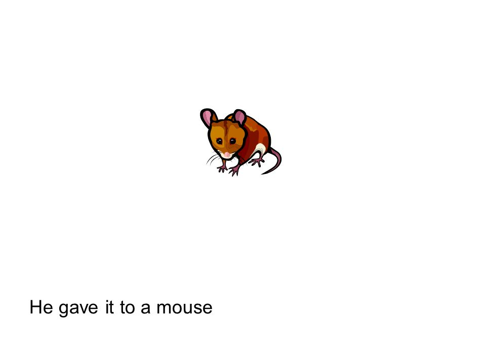 He gave it to a mouse