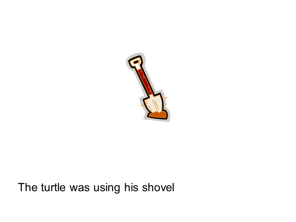 The turtle was using his shovel