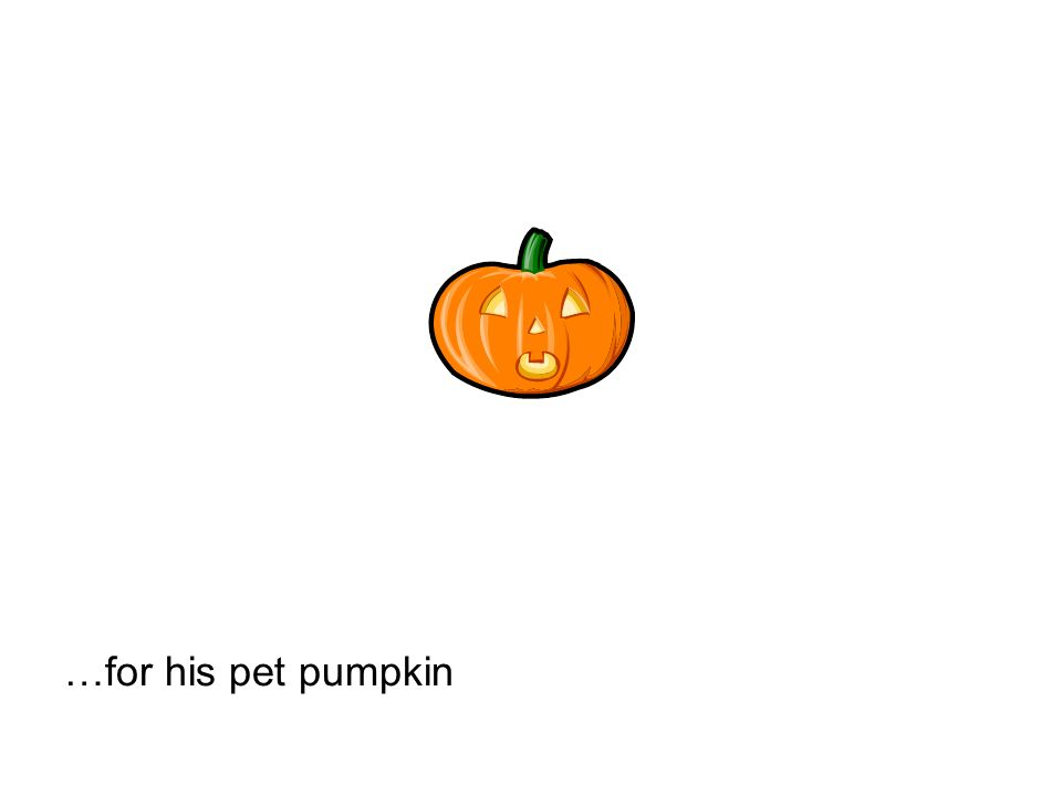 …for his pet pumpkin