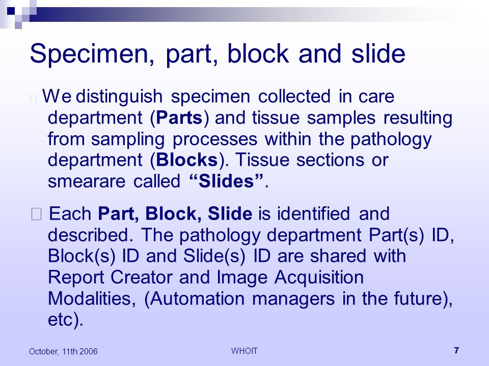 WHOIT7 October, 11th 2006 Specimen, part, block and slide We distinguish specimen collected in care department (Parts) and tissue samples resulting from sampling processes within the pathology department (Blocks).