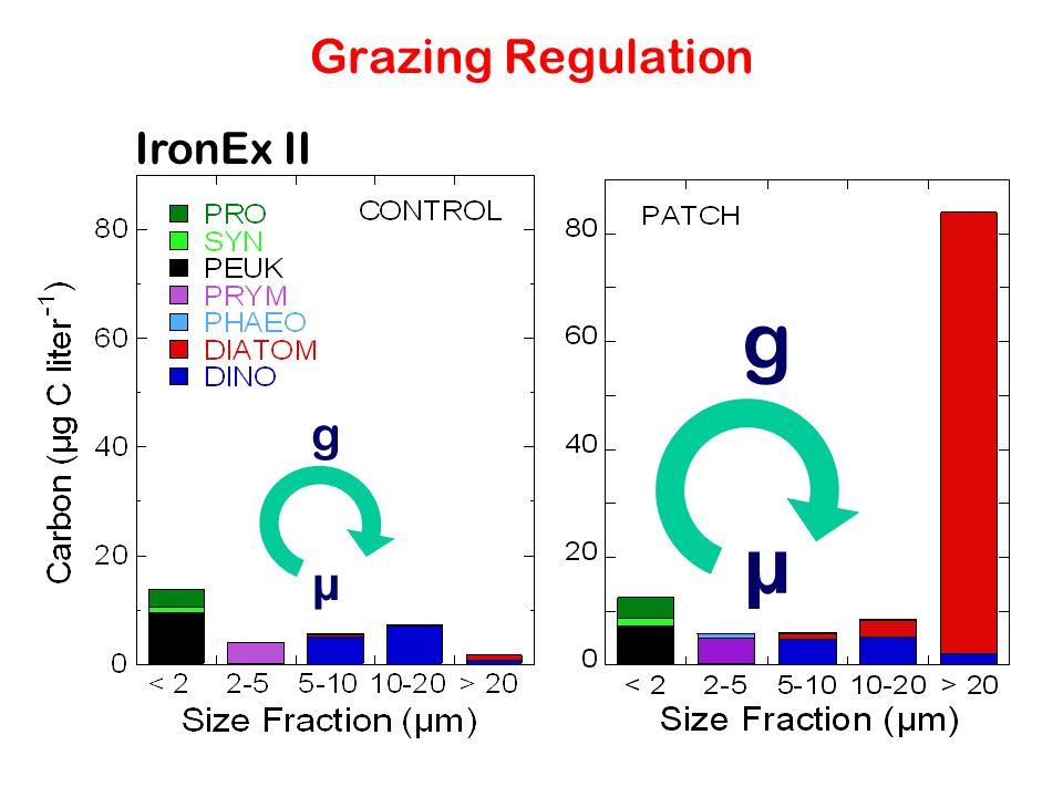 Grazing Regulation IronEx II µ g µ g
