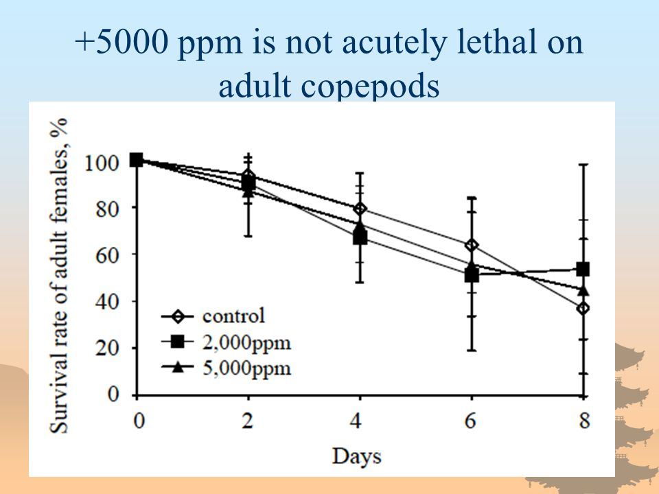 +5000 ppm is not acutely lethal on adult copepods