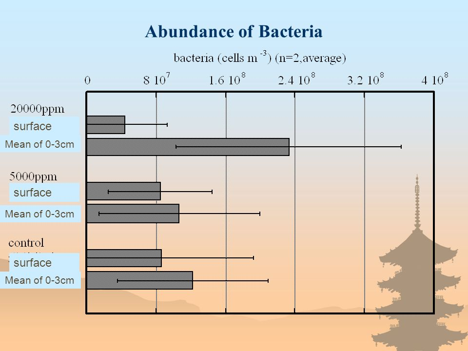 Abundance of Bacteria Mean of 0-3cm surface