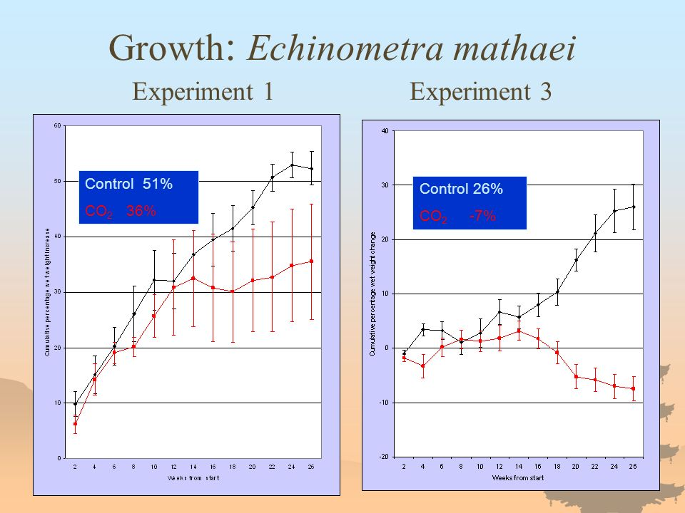 Growth : Echinometra mathaei Experiment 1 Experiment 3 Control 51% CO 2 36% Control 26% CO 2 -7%