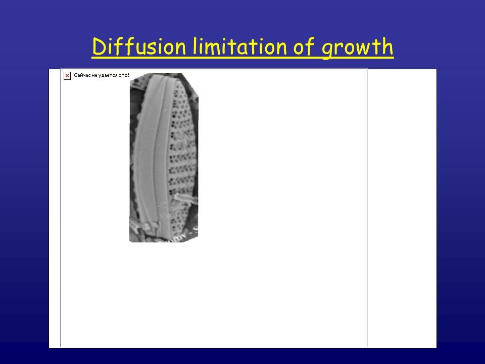 Diffusion limitation of growth