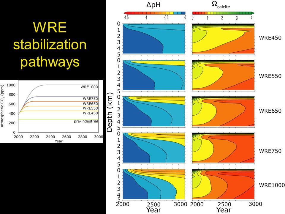 WRE stabilization pathways