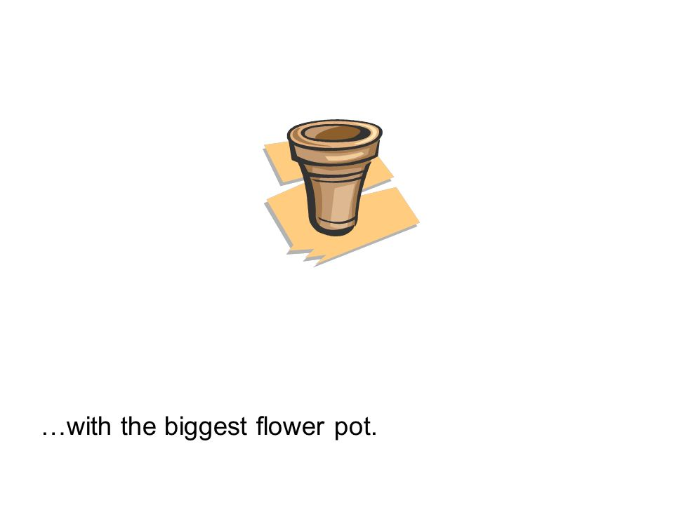 …with the biggest flower pot.