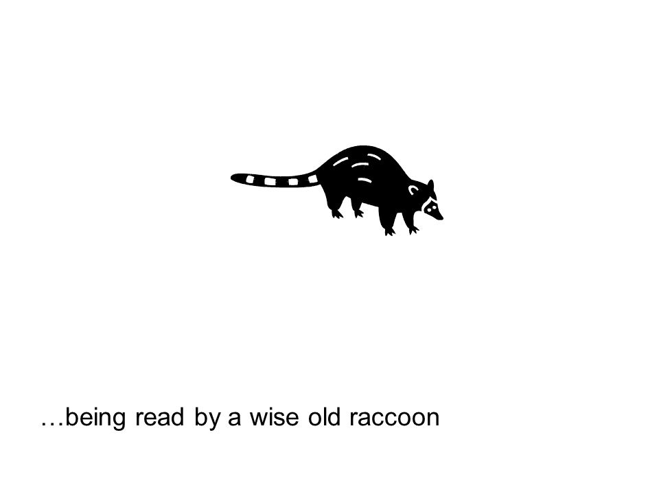 …being read by a wise old raccoon