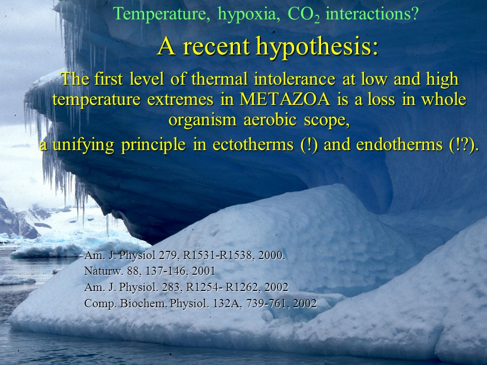 A recent hypothesis: The first level of thermal intolerance at low and high temperature extremes in METAZOA is a loss in whole organism aerobic scope,