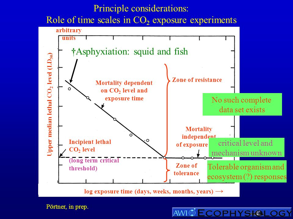 Principle considerations: Role of time scales in CO 2 exposure experiments Incipient lethal CO 2 level (long term critical threshold) arbitrary units Mortality independent of exposure time Zone of resistance Mortality dependent on CO 2 level and exposure time Zone of tolerance Upper median lethal CO 2 level (LD 50 ) log exposure time (days, weeks, months, years) No such complete data set exists Tolerable organism and ecosystem (?) responses critical level and mechanism unknown Asphyxiation: squid and fish Pörtner, in prep.