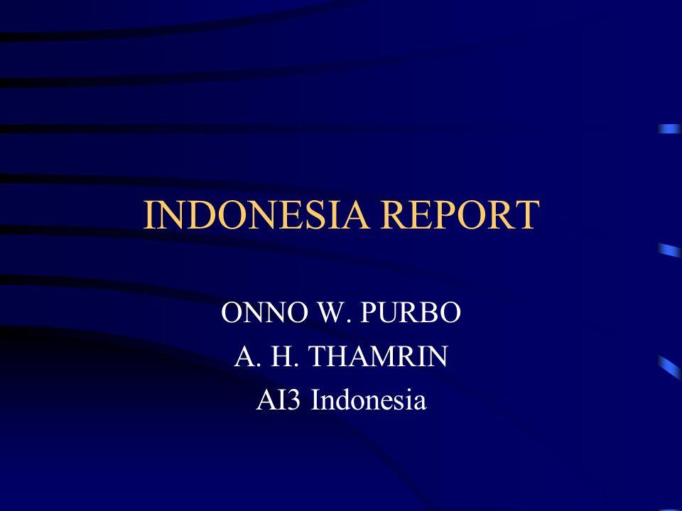 INDONESIA REPORT ONNO W. PURBO A. H. THAMRIN AI3 Indonesia