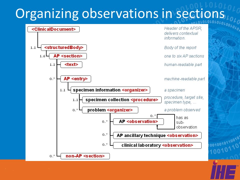 Organizing observations in sections