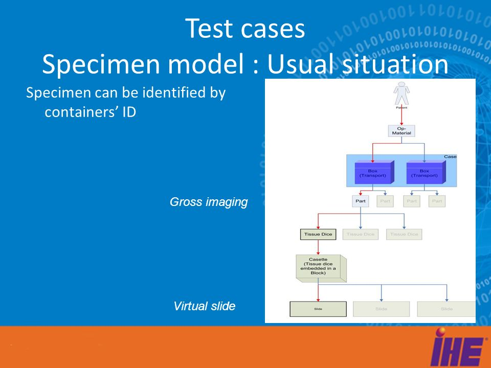 Test cases Specimen model : Usual situation Specimen can be identified by containers ID Gross imaging Virtual slide