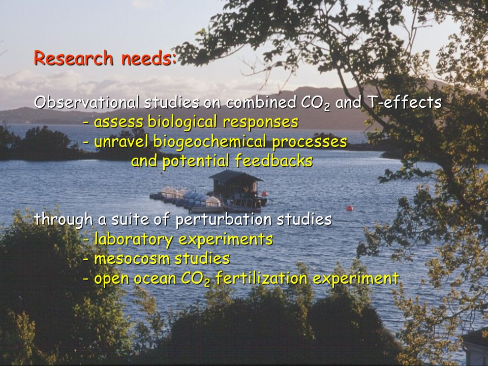Research needs: Observational studies on combined CO 2 and T-effects - assess biological responses - unravel biogeochemical processes and potential feedbacks through a suite of perturbation studies - laboratory experiments - mesocosm studies - open ocean CO 2 fertilization experiment