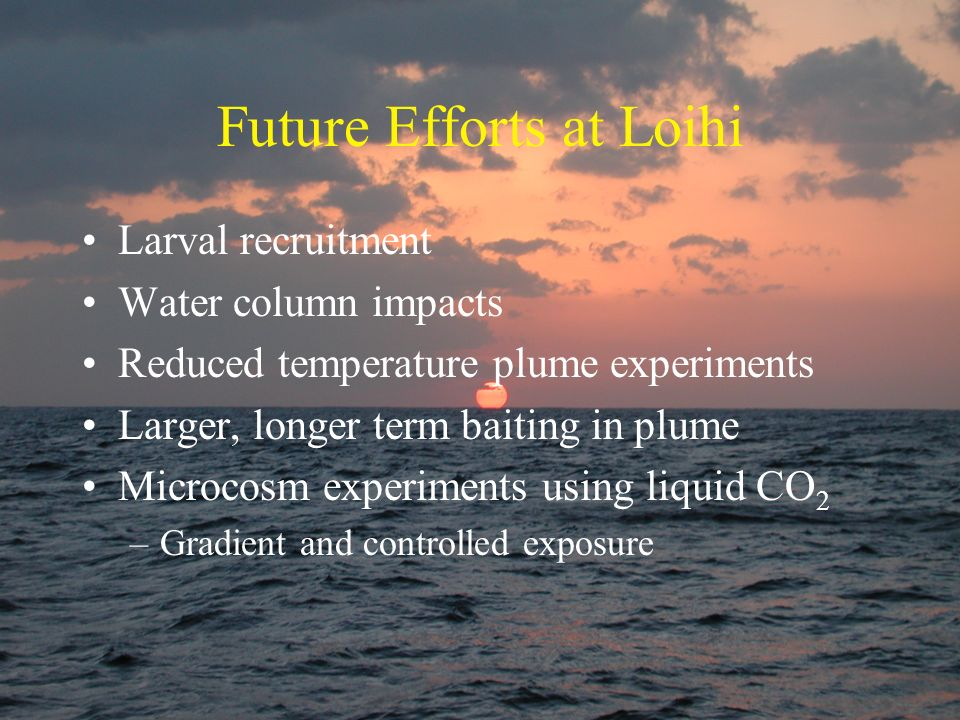 Future Efforts at Loihi Larval recruitment Water column impacts Reduced temperature plume experiments Larger, longer term baiting in plume Microcosm e