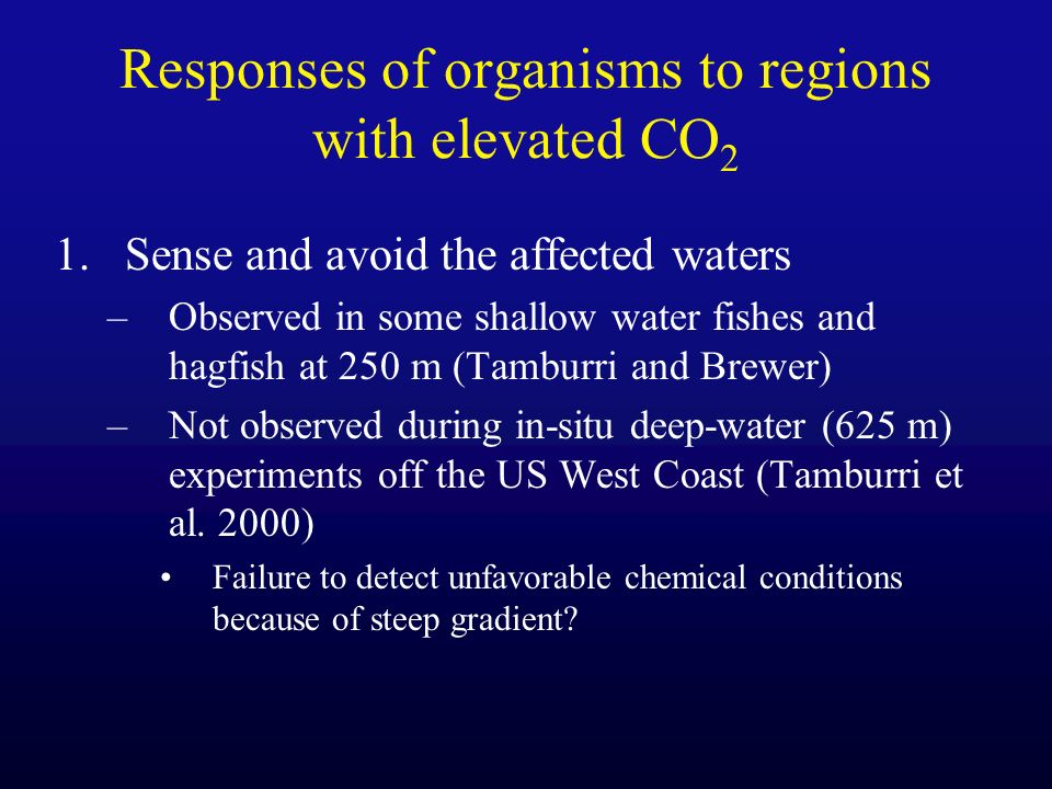 Responses of organisms to regions with elevated CO 2 1.Sense and avoid the affected waters –Observed in some shallow water fishes and hagfish at 250 m