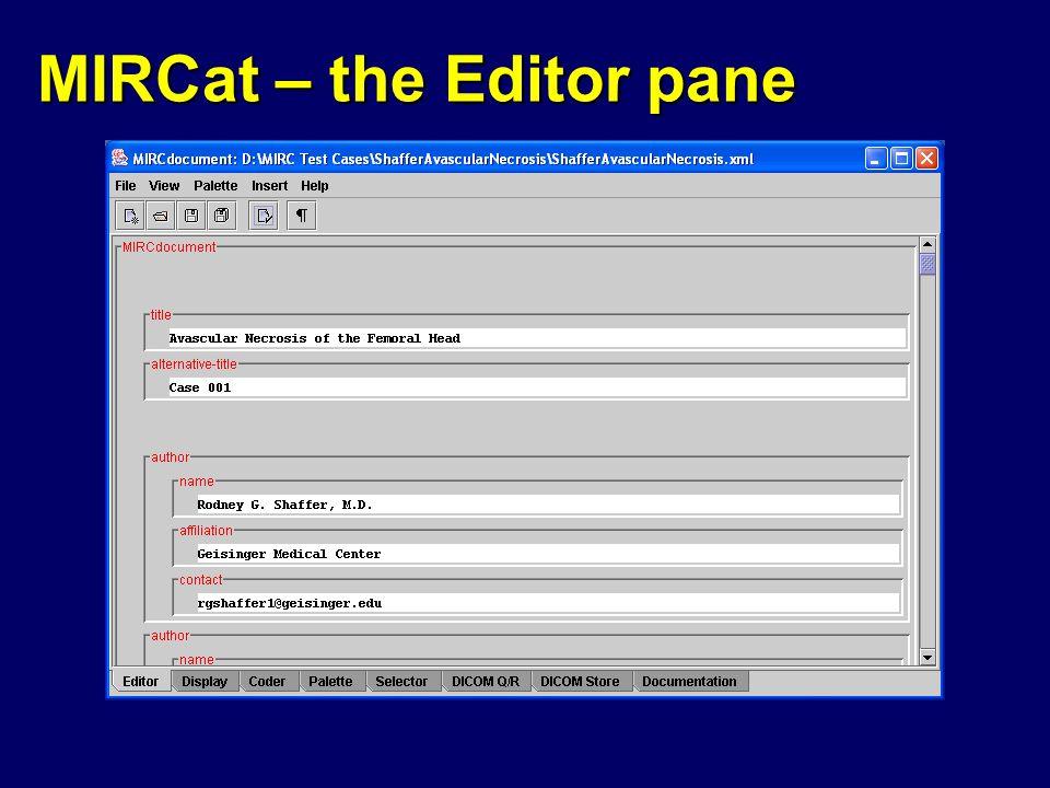 MIRCat – the Editor pane