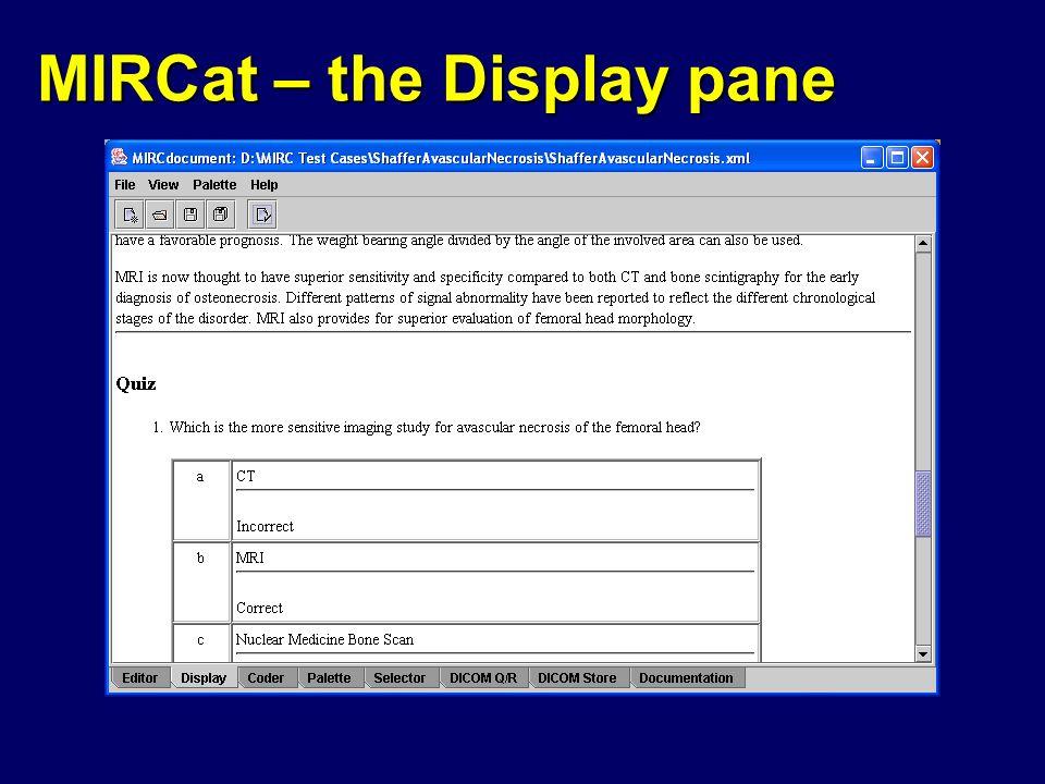 MIRCat – the Display pane
