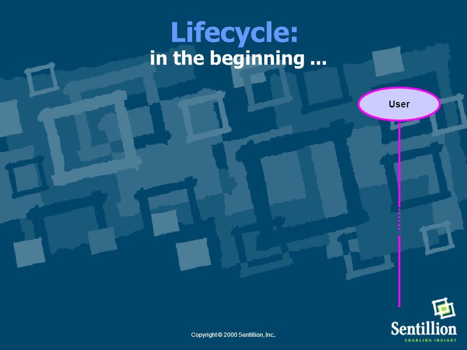 Copyright © 2000 Sentillion, Inc. Application Common Context System: Lifecycle Use Case Healthcare Context Manager Common Clinical Context Lifecycle E