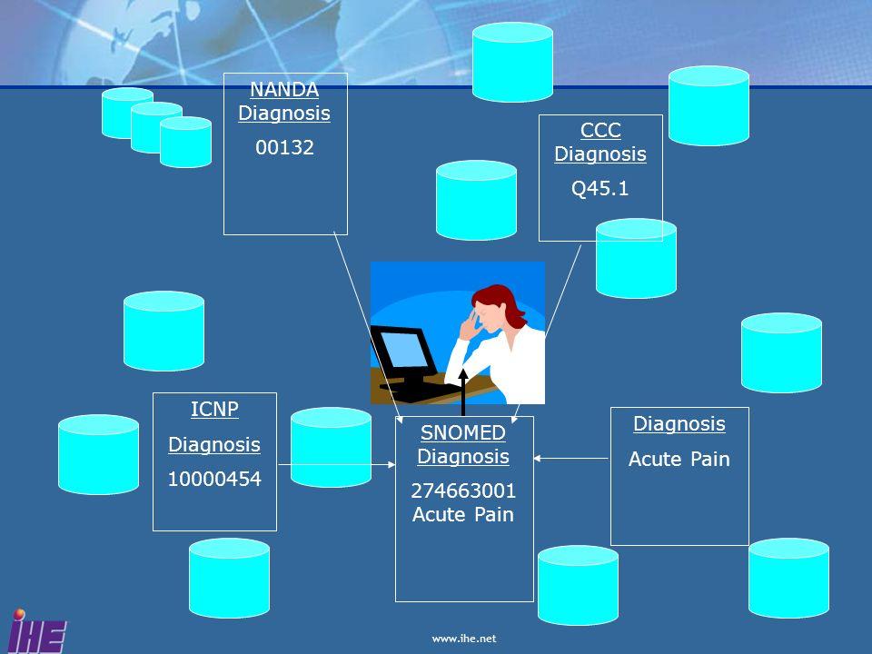 ICNP Diagnosis 10000454 NANDA Diagnosis 00132 CCC Diagnosis Q45.1 Diagnosis Acute Pain SNOMED Diagnosis 274663001 Acute Pain
