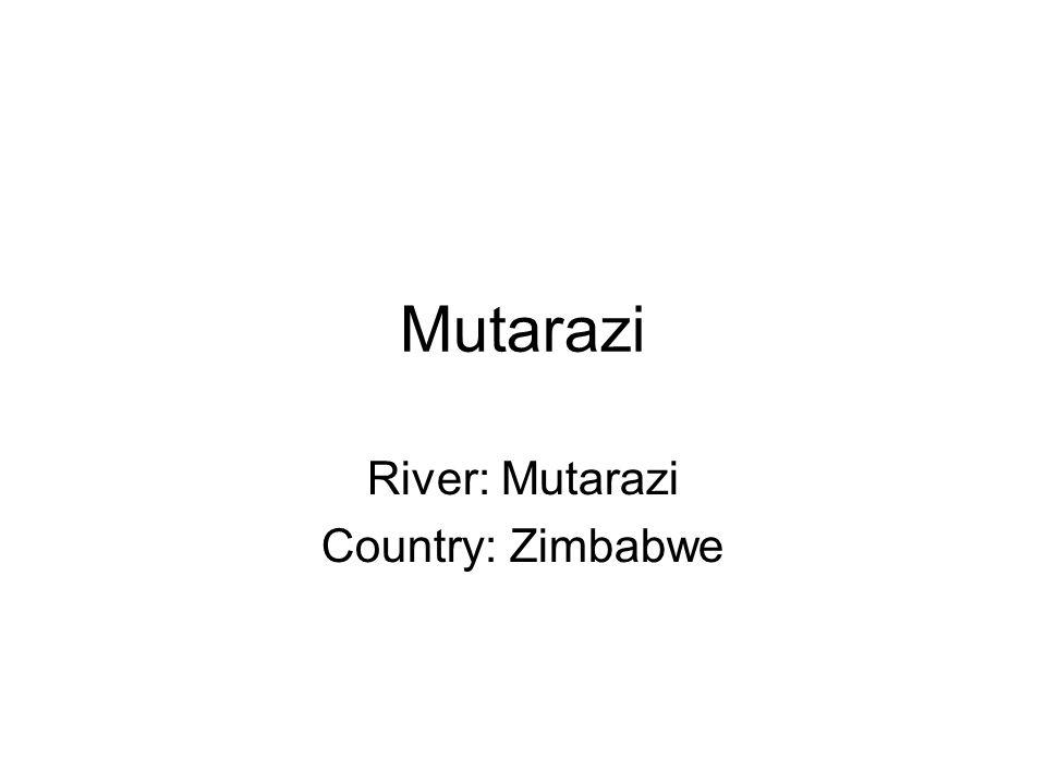 Mutarazi River: Mutarazi Country: Zimbabwe