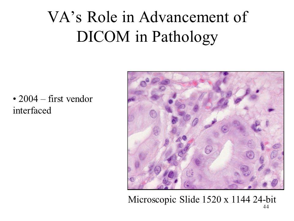 43 VAs Role in Advancement of DICOM in Endoscopy 1024x768 24-bit Acquisition Context (2005)