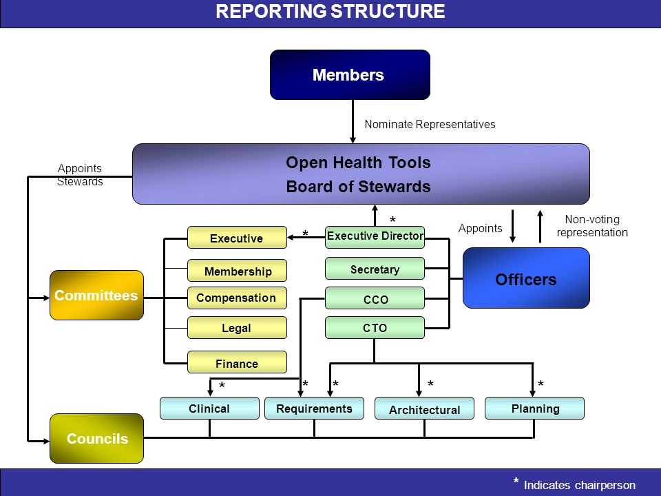 REPORTING STRUCTURE Appoints Stewards Appoints Non-voting representation Nominate Representatives * * * * * * * Members Open Health Tools Board of Ste