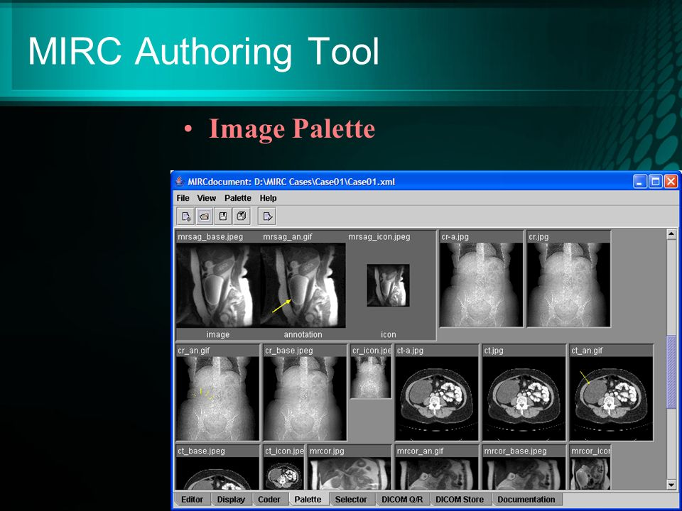 MIRC Authoring Tool Image Palette