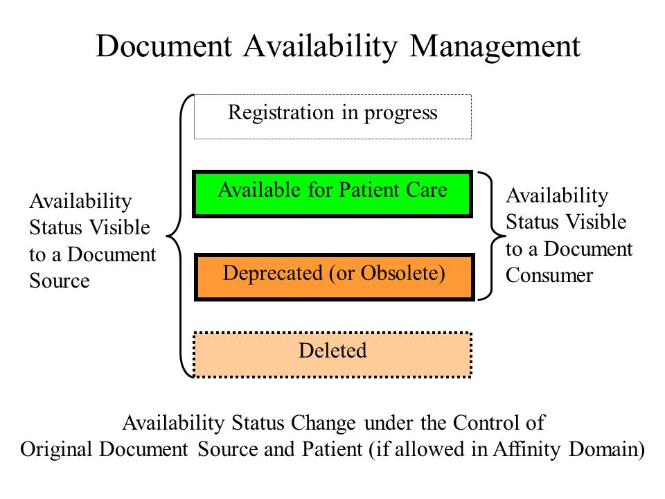 Document LifeCycle Management Document Set Id shall be under the control of the Source of Original Version number is an optional/unused field (policy to increment ?) Addendum and Original Registry Entries shall be similar.