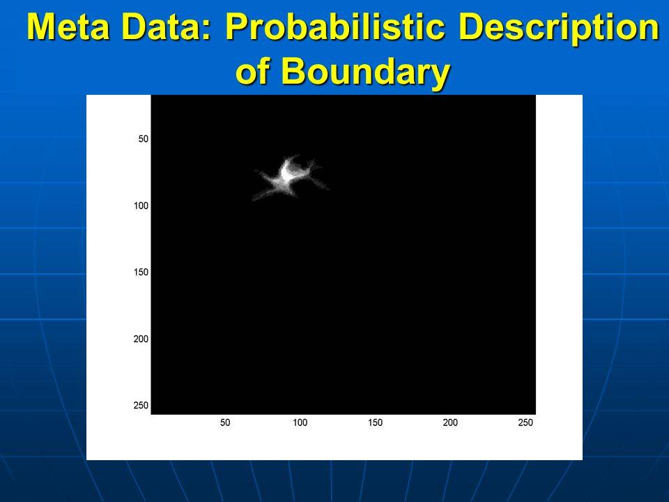 Meta Data: Probabilistic Description of Boundary