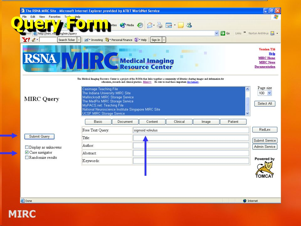 MIRC Query Form