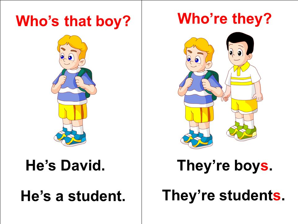Whos that boy? Hes David. Hes a student. Whore they? Theyre boys. Theyre students.