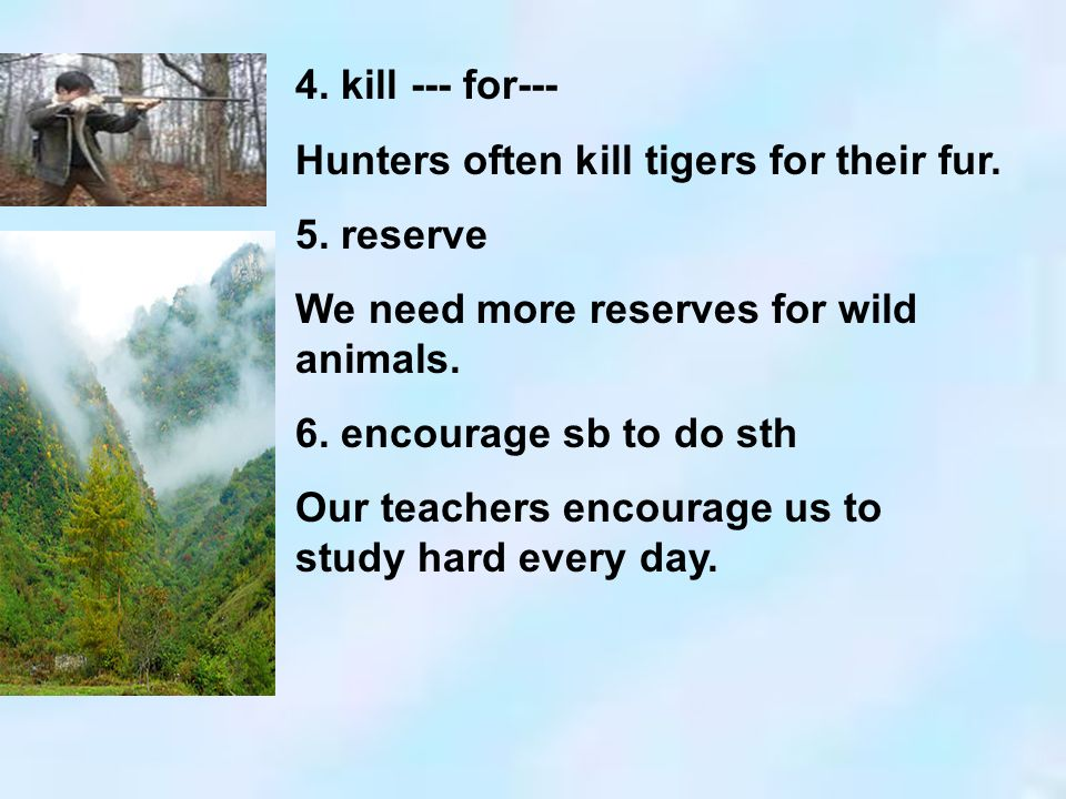4. kill --- for--- Hunters often kill tigers for their fur. 5. reserve We need more reserves for wild animals. 6. encourage sb to do sth Our teachers