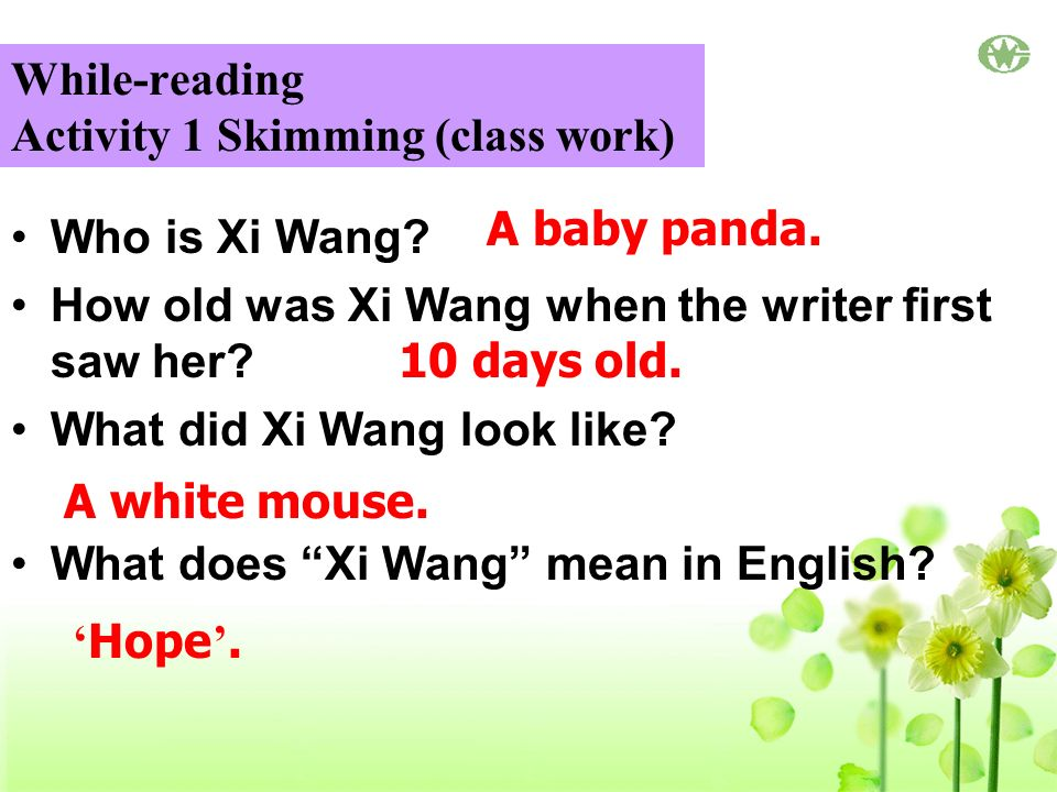 While-reading Activity 1 Skimming (class work) Who is Xi Wang.