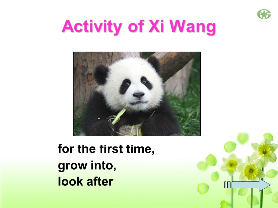 Activity of Xi Wang for the first time, grow into, look after