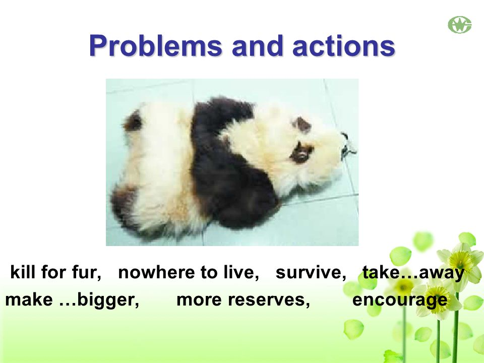 Problems and actions kill for fur, nowhere to live, survive, take…away make …bigger, more reserves, encourage