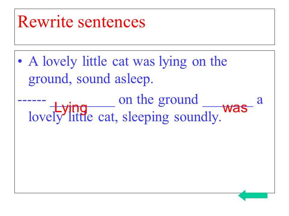 Rewrite sentences A lovely little cat was lying on the ground, sound asleep.