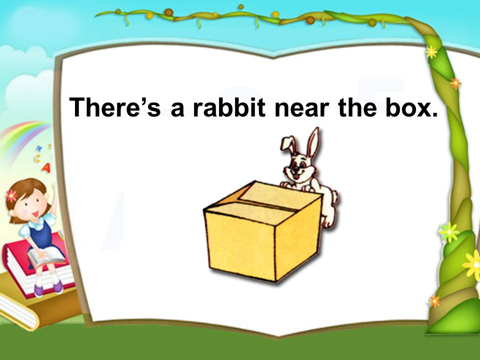 Theres a rabbit near the box.
