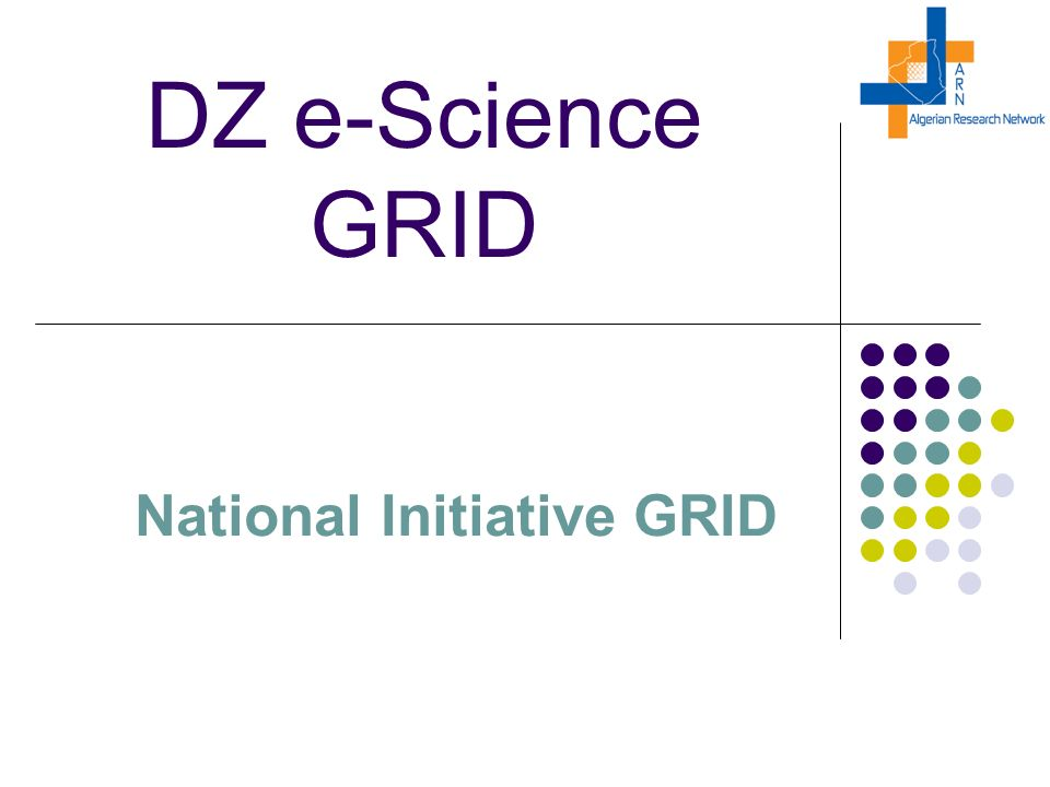 DZ e-Science GRID National Initiative GRID