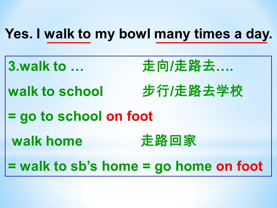 Yes. I walk to my bowl many times a day. 3.walk to … / ….