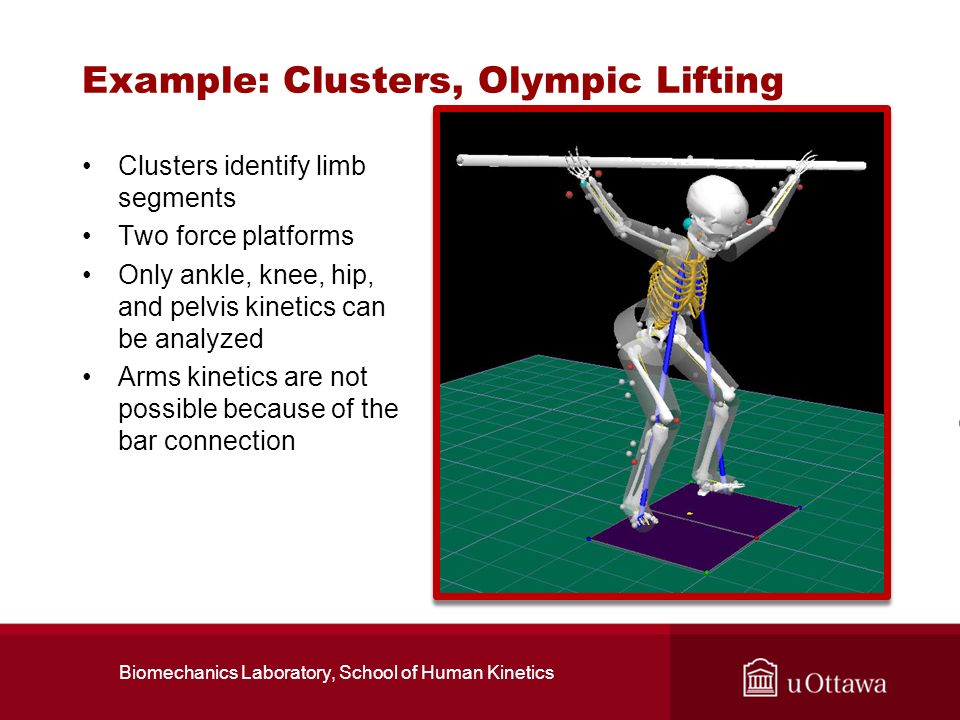 Example: Clusters, Olympic Lifting Clusters identify limb segments Two force platforms Only ankle, knee, hip, and pelvis kinetics can be analyzed Arms